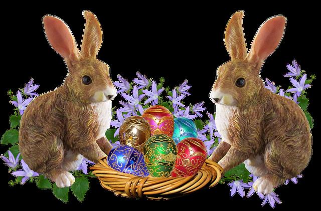 králíci a vejce
