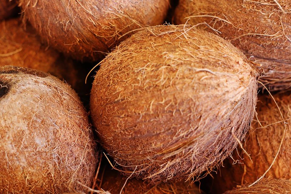 Co se dá upéct z kokosové mouky